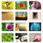 Gallery 2 – PHP Photo gallery Script